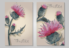 与手拉的桃红色蓟的两张明信片 图库摄影