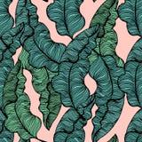与手拉的热带叶子的无缝的样式 时髦棕榈分支 也corel凹道例证向量 库存照片