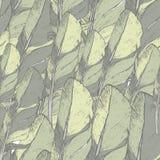 与手拉的羽毛的无缝的样式 嬉皮设计元素 免版税库存图片