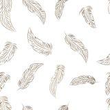 与手拉的羽毛的无缝的样式 库存照片