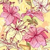 与手拉的花的花卉无缝的样式-  免版税库存照片