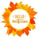 与手拉的金黄叶子的秋天圆的框架 你好在花圈的秋天文本 秋天问候设计 免版税库存图片