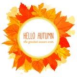 与手拉的金黄叶子的秋天圆的框架 库存图片