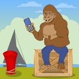 与手机的大猩猩 库存图片