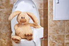 与手纸的软的被充塞的兔子在洗手间 消化问题的概念 r 免版税库存图片