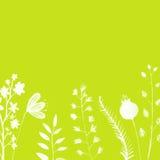 与手画白色的鲜绿色的背景 库存照片