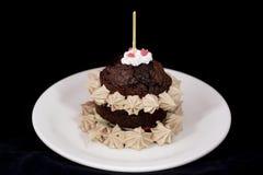与打好的奶油的新鲜的被烘烤的巧克力蛋糕 图库摄影