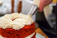 与打好的奶油的红色天鹅绒蛋糕 库存照片