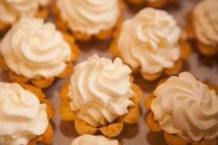 与打好的白色软的奶油的微型支持的蛋糕与巧克力油炸马铃薯片 免版税库存图片