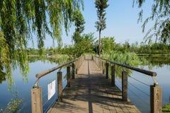 与扶手栏杆的Planked人行桥在湖在晴朗的夏天早晨 免版税库存图片