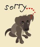 与抱歉的小狗的例证 免版税库存照片
