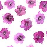 与抽象桃红色花的无缝的样式 免版税库存照片