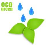 与抽象纸叶子的Eco标签。 库存照片