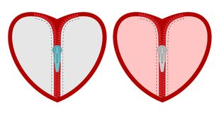 与拉链的心脏 库存例证