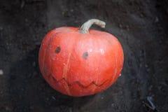 与拉长的嘴的在黑暗的土壤的南瓜和眼睛 免版税库存照片