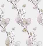 与拉长的樱桃花的传染媒介无缝的样式 库存照片