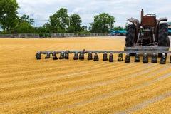 与拖拉机的水稻 免版税库存图片