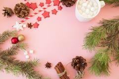 与拷贝空间,杉树的圣诞节背景分支,热的cho 库存照片