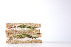 与拷贝空间的健康鸡丁沙拉三明治 库存图片