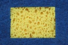 与拷贝空间的新的吸收剂海绵Absract背景 免版税库存图片