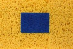 与拷贝空间的新的吸收剂海绵Absract背景 库存图片