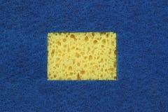 与拷贝空间的新的吸收剂海绵Absract背景 免版税库存照片