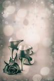 与探戈鞋子和玫瑰的抽象背景 库存照片