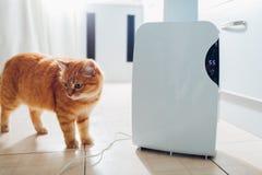 与接触控制板,湿度指示剂,紫外灯,空气ionizer,水容器的抽湿机在家运作 空气烘干机 图库摄影