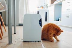 与接触控制板,湿度指示剂,紫外灯,空气ionizer,水容器的抽湿机在家运作 空气烘干机 免版税库存照片