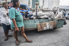 与推车和狗的街道擦净剂 库存图片