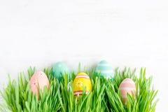 与掩藏在绿色gra的五颜六色的鸡蛋行的复活节背景  免版税库存照片