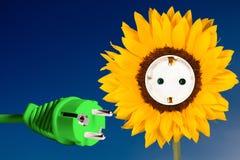与插口和电源插头的向日葵 库存照片