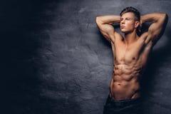 与摆在演播室的好的强健的身体的美好的赤裸上身的年轻人模型 库存照片