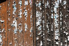 与撕下的海报钉书针和遗骸的木毂仓大门  免版税库存照片