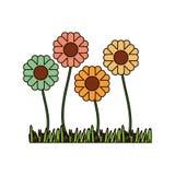 与播种的白色背景与厚实的等高的抽象向日葵 向量例证