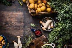 与收获菜、绿色、土豆和蘑菇的秋天季节性烹调成份在黑暗的土气厨房用桌backgro 库存图片