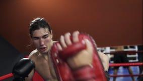 与教练的赤裸上身的kickboxer训练 拳击手套的体育人与拳击爪子一起使用 概念  股票录像