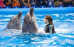 与教练员的海豚 免版税图库摄影