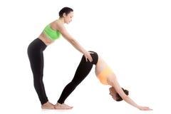 与教练的瑜伽,向下的狗瑜伽姿势 库存照片