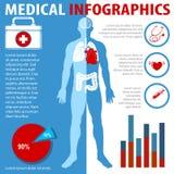 与文本和解剖学的医疗infographics 库存例证