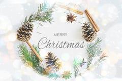 与文本圣诞快乐的圣诞节圆的框架花圈卡片 冷杉分支,锥体,八角,在淡色蓝色bokeh backgr的桂香 图库摄影