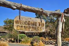 与文本欢迎的葡萄酒木牌向垂悬在分支的坎皮纳斯 免版税库存照片