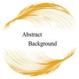 与文本的金黄羽毛样式在中心 抽象背景 标签的,横幅,徽章,海报,贴纸模板 免版税库存照片