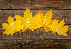 与文本销售的秋叶在土气木背景 秋天 库存图片