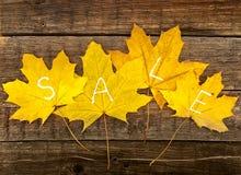 与文本销售的秋叶在土气木背景 秋天 免版税库存图片