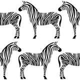 与斑马剪影的无缝的样式 免版税库存图片