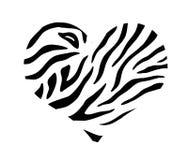 与斑马印刷品纹理样式的心脏 库存照片