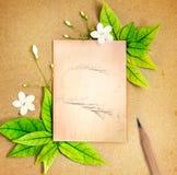 与新春天绿色叶子边界的老白纸板料 免版税库存照片