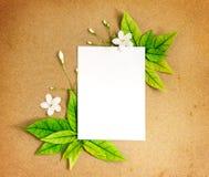 与新春天绿色叶子borde的白色白纸板料 库存照片