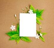 与新春天绿色叶子borde的白色白纸板料 免版税库存照片